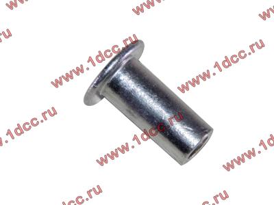 Заклепка алюминиевая 10х24 H2/H3 HOWO (ХОВО) 189000340068 AL фото 1 Барнаул
