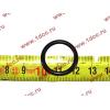 Кольцо уплотнительное форсунки резиновое H2/H3 HOWO (ХОВО) VG609070080 фото 2 Барнаул