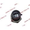 Датчик давления масла H3 HOWO (ХОВО) VG1540090035/1 фото 2 Барнаул
